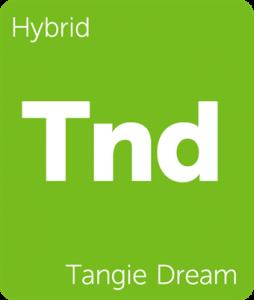 Leafly Tangie Dream cannabis hybrid strain
