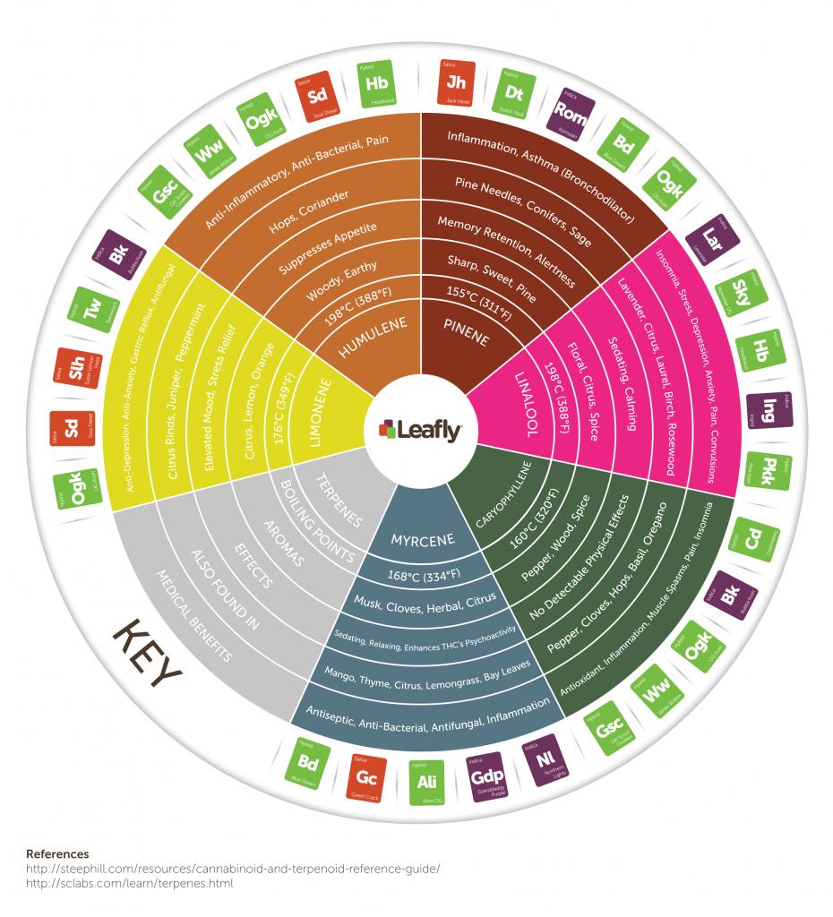Leafly cannabis strain terpene wheel