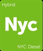 Leafly NYC Diesel hybrid cannabis strain