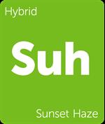 Leafly Sunset Haze hybrid cannabis strain
