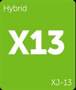 Leafly XJ-13 hybrid cannabis strain
