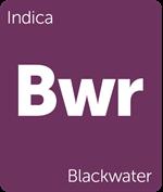 Leafly Blackwater indica cannabis strain