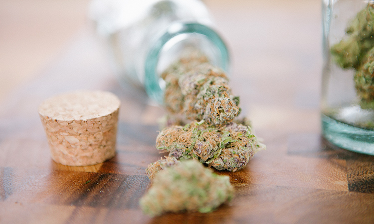 Jars containing cannabis buds